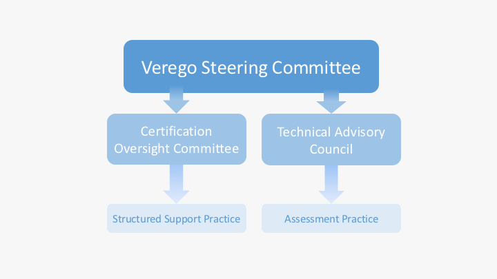 verego-governance-overview-12-30-16v5